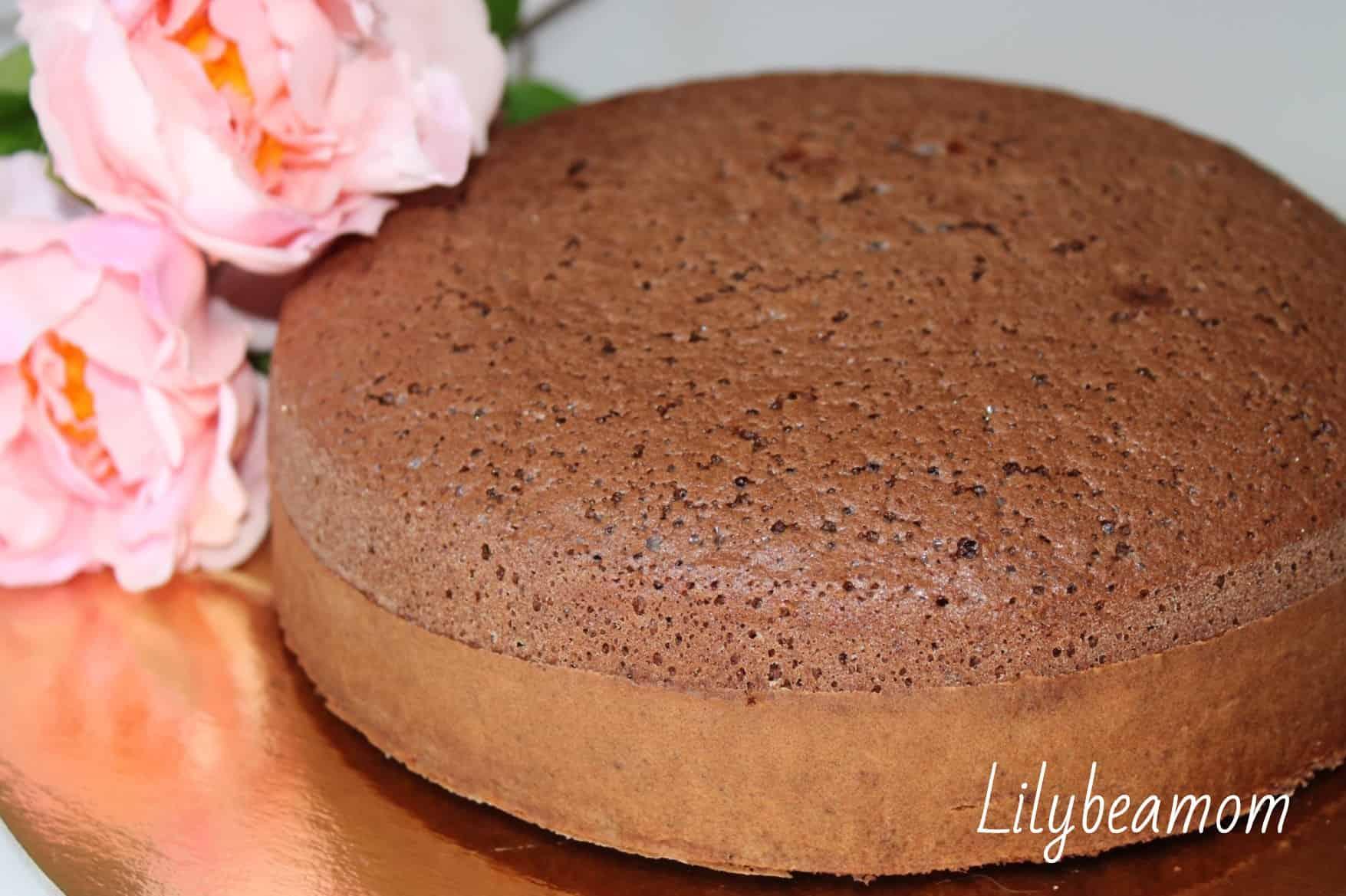 Ricetta Pan Di Spagna Al Cacao Di Benedetta.Pan Di Spagna Al Cacao Senza Glutine Panini Sopraffini